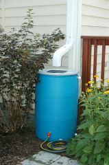 SPD Rain Barrel